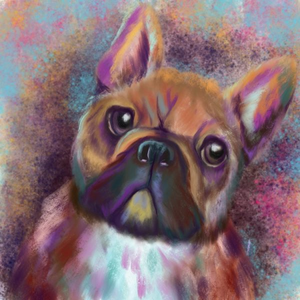 Frenchie_Abstract