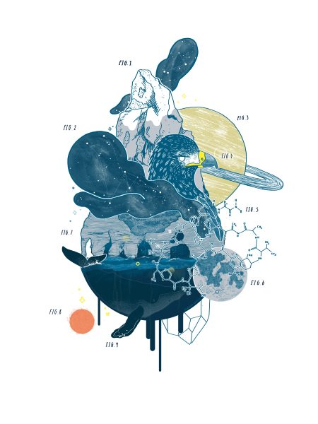 Anatomy of Wonder - 180112