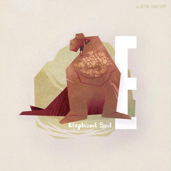 E for Elephant Seal