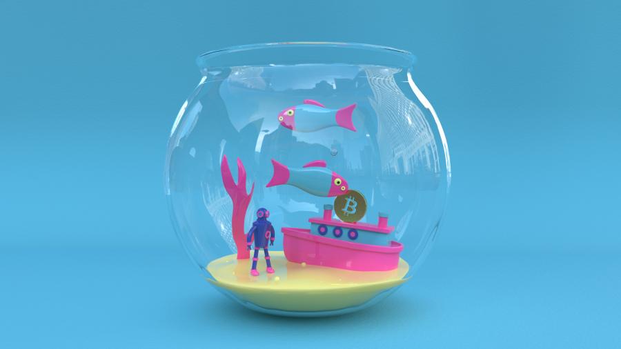 Fish_V1_01302