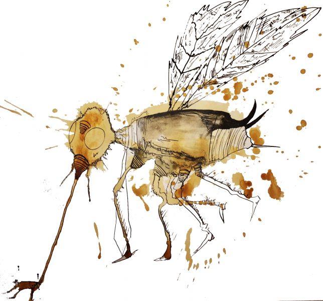 mosquitotea