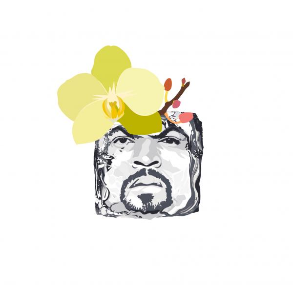 Vanilla Ice Cube