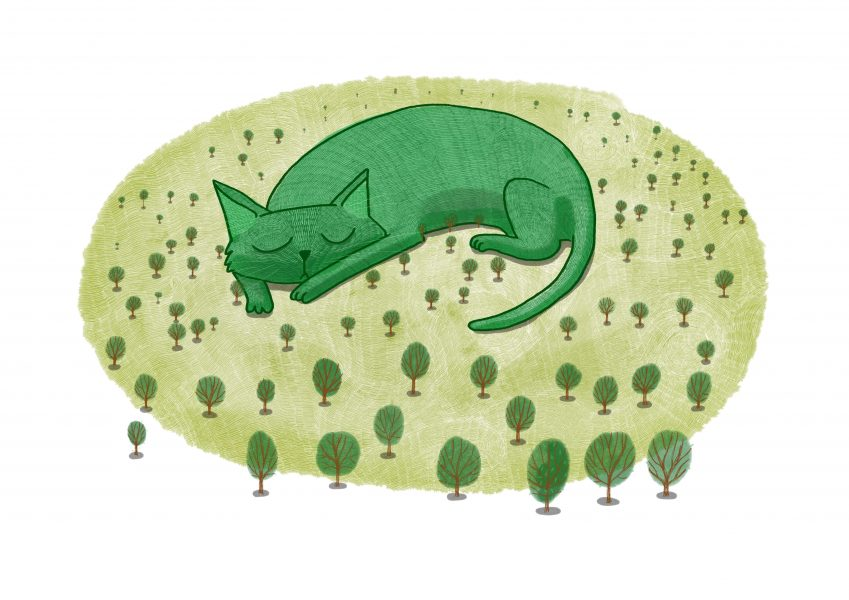 The Giant Cat is Sleeping | Children's Book Concept Illustration