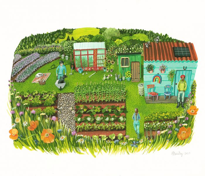 The Allotment
