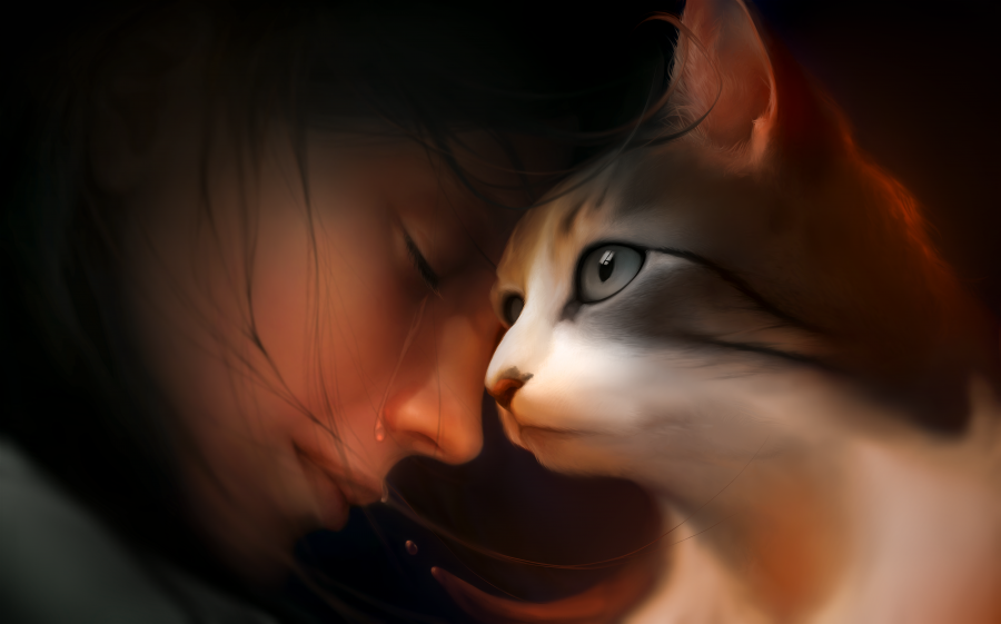 Cat & Girl Crying