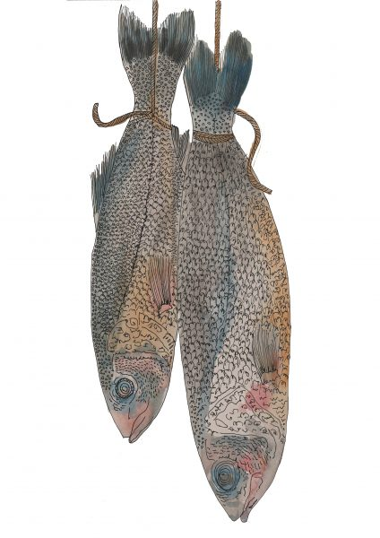 HANGING MACKEREL