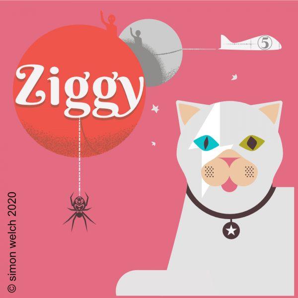 ziggy 5 years