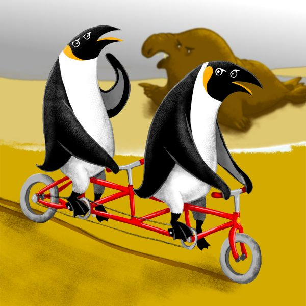 Cycling Penguins