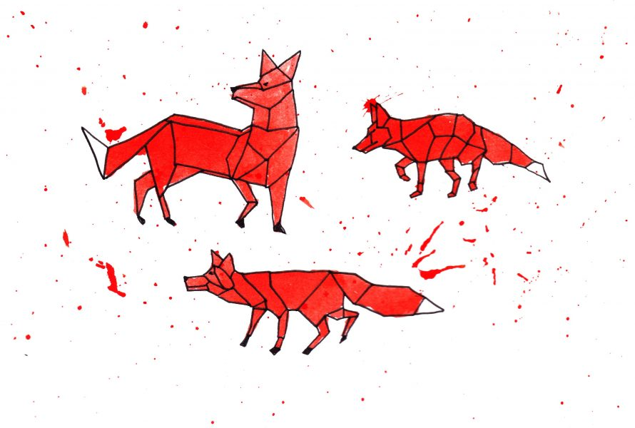 Foxes geometric