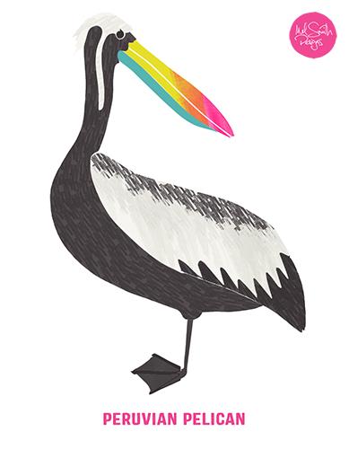 Pelican by Mel Smith Designs