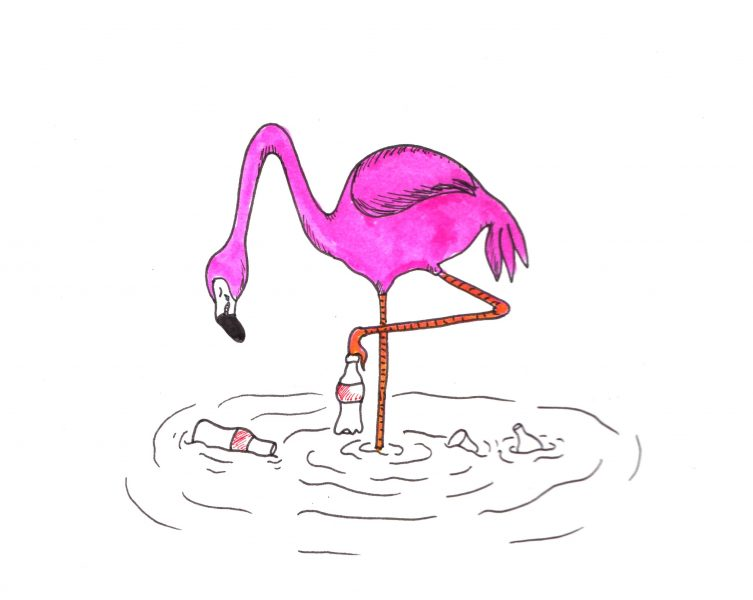 Roy the Flamingo: Puddles of Plastic