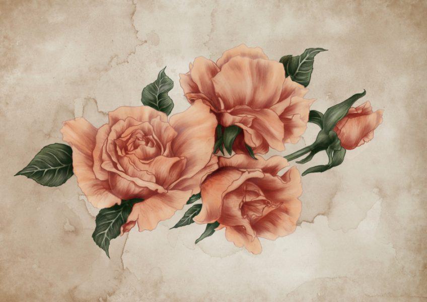 Cinnamon Peach Roses