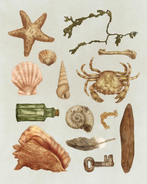 beach illustration 8 x 10