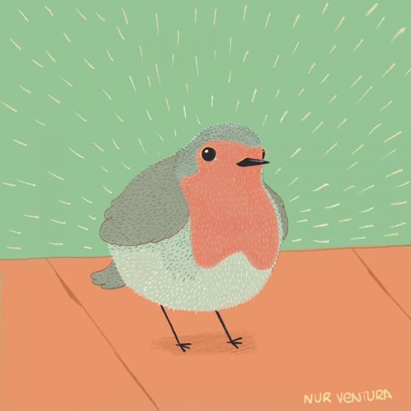 petirrojo_nurventura_illustration