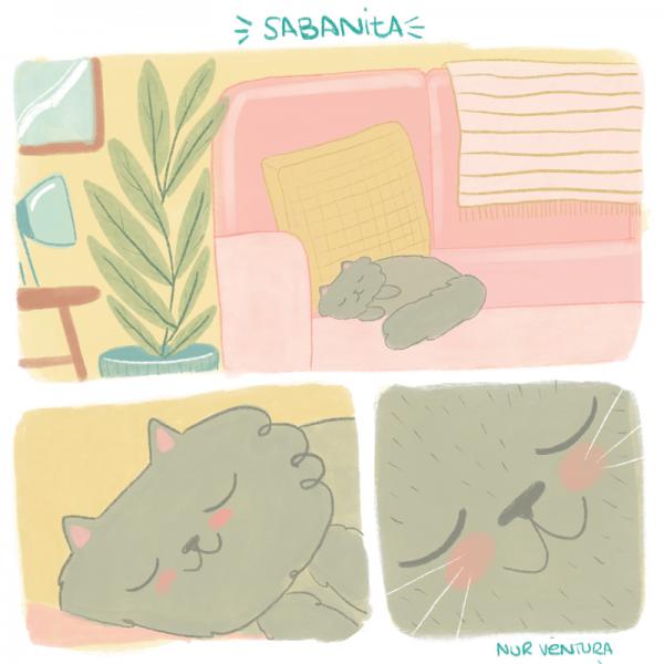 sabanita-durmiendo-nurventura