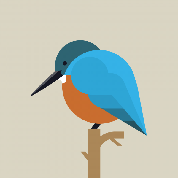 Kingfisher-English-thumbnail-v1