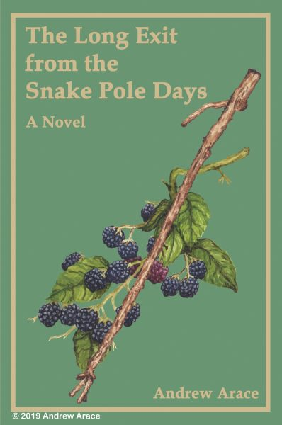 The long exit from the snake-pole days-Book Cover Design