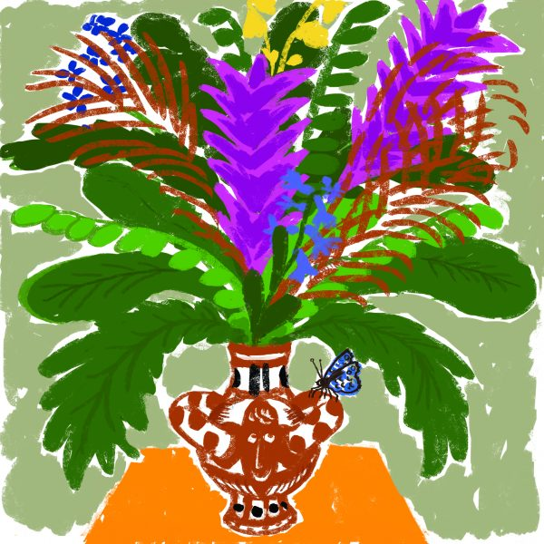 bloemenvlinder
