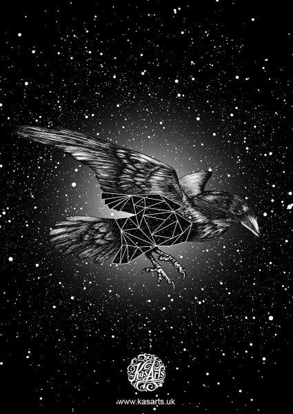 crow-geo-flight-series-black-kasarts