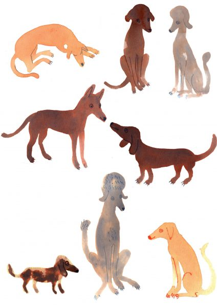 Pooches