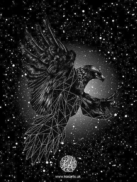 eagle-geo-flight-series-black-kasarts