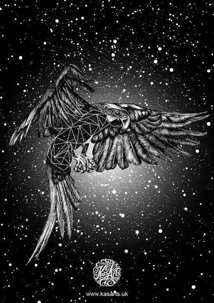 parrot-geo-flight-series-black-kasarts