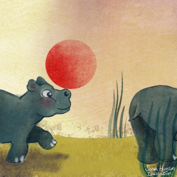 Hippo - ©SarahHarrisonIllustration