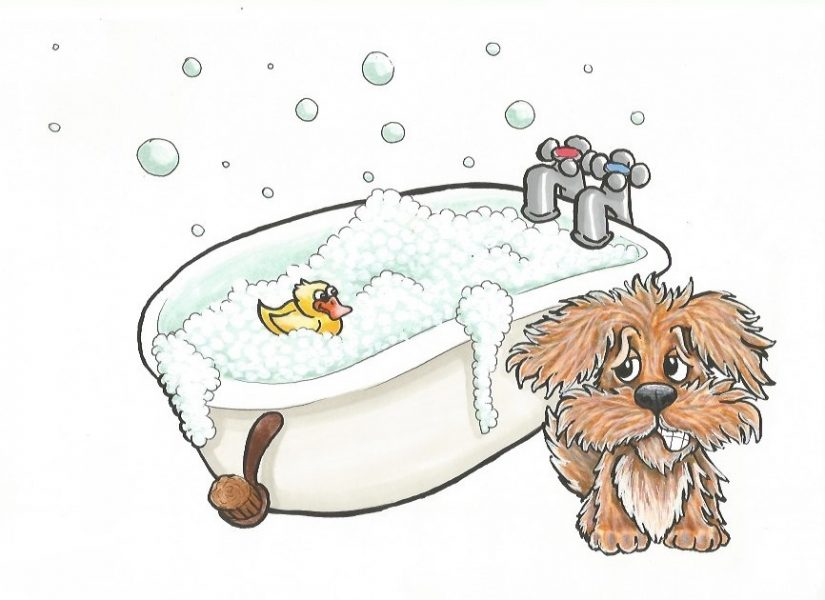 Bathtime from