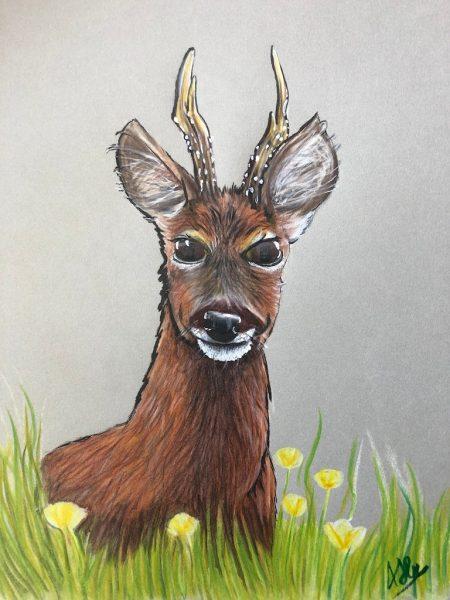 Deer Chap