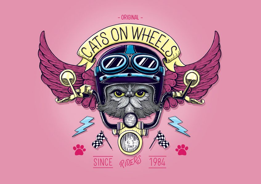 Cats On Wheels