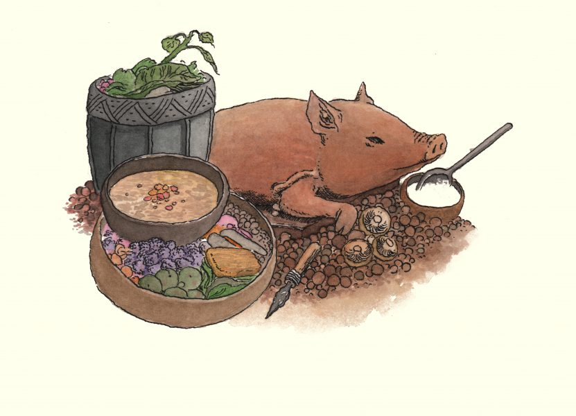 A stoneage pig-roast