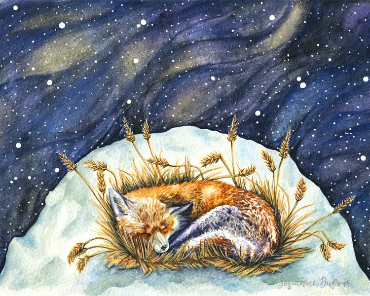 Fox Among The Stars