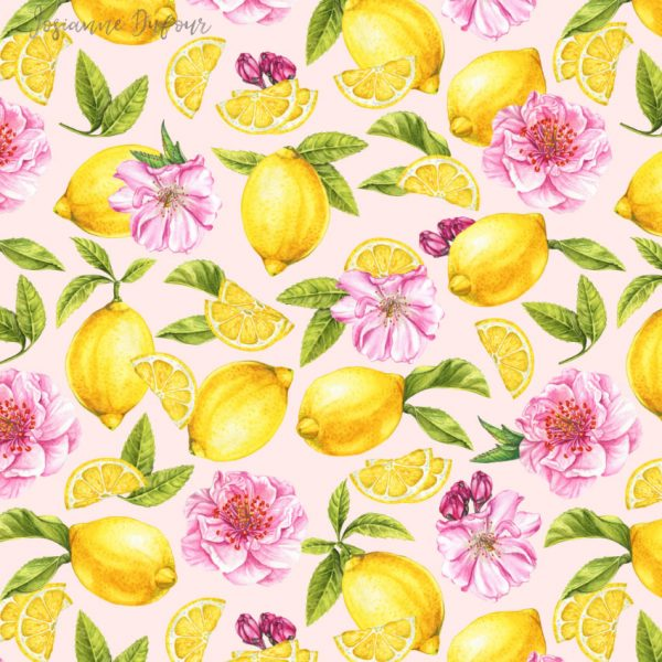 Lemons and pink blossoms
