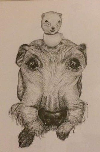 Scamp drawing