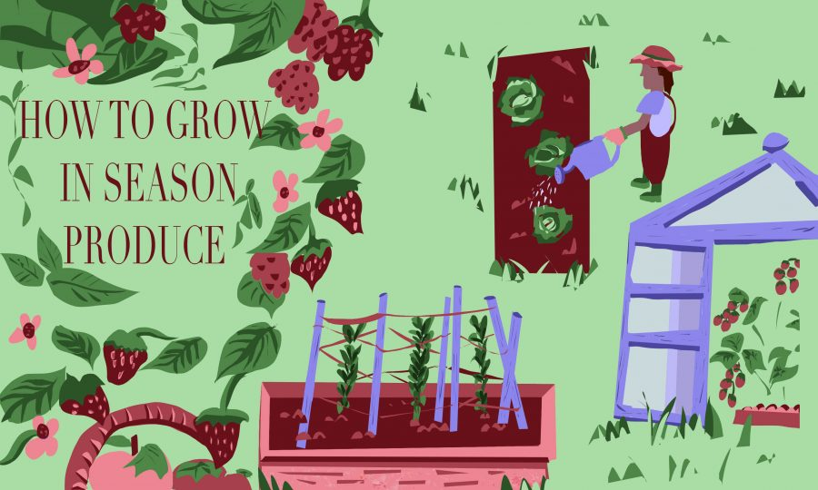 How to Grow in Season Produce