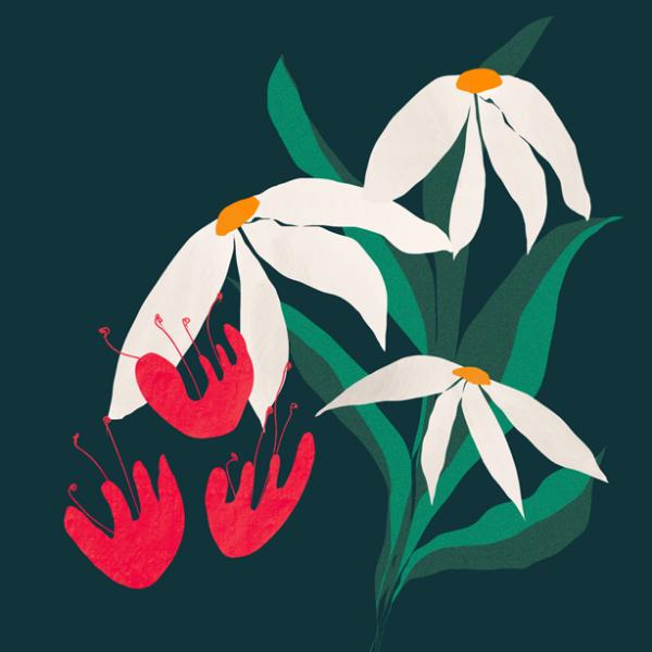 Flowers pt 2