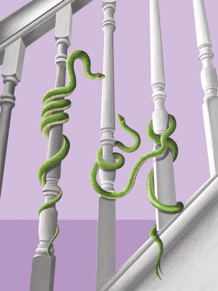 Snake Bannister
