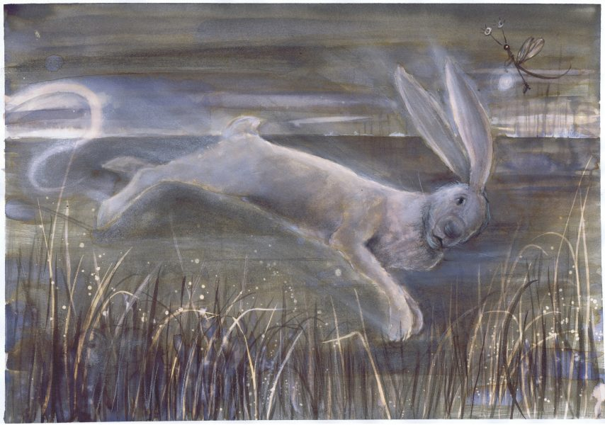 Harper Hare escaping from his letter