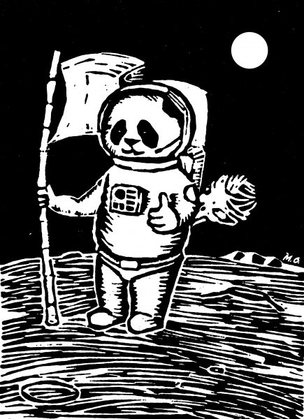 Pandas in Space