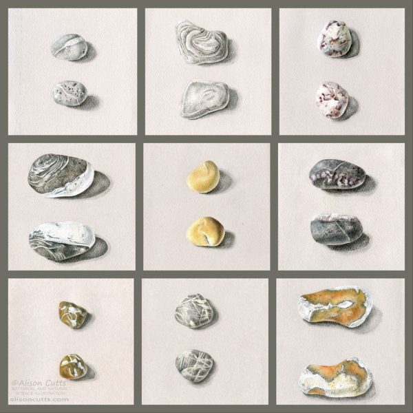 Gallery of pebbles