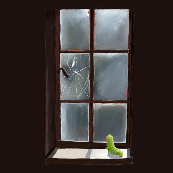 Luna_at_window_small