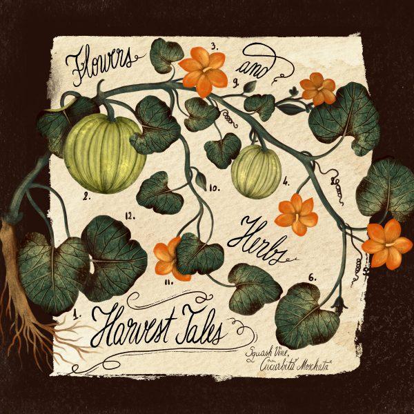 Harvest Tales