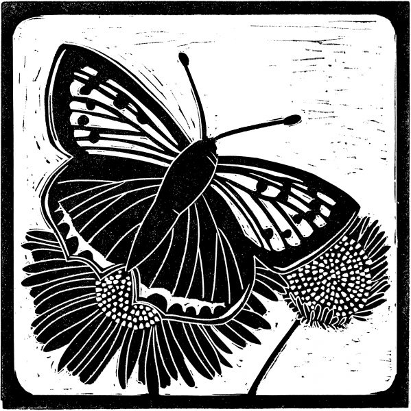 National Trust's Sutton Hoo butterfly linocut