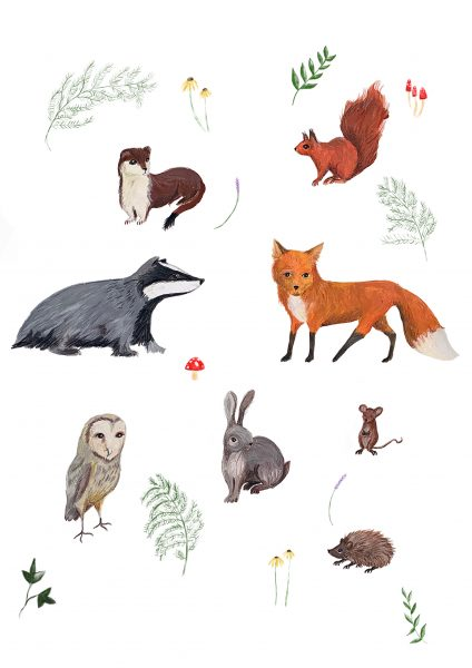 Woodland_Animals_
