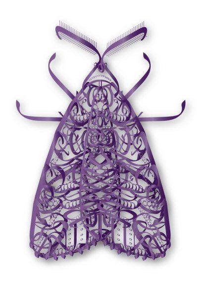 Typographic moth