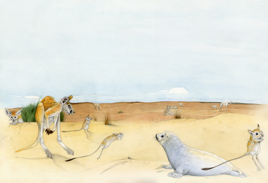 Funny Animal Atlas  - Desert