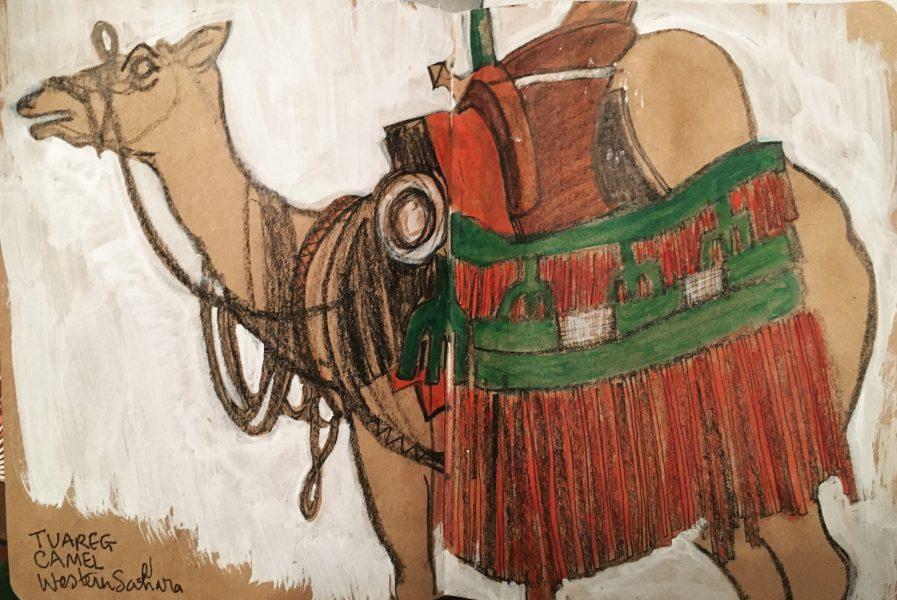 Camel, Horniman Museum