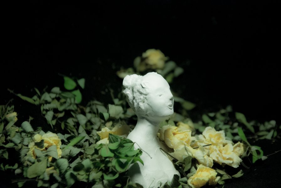 Lady amidst roses
