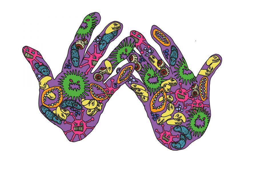 Hands & Germs