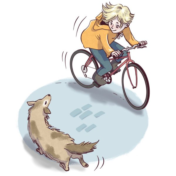 Bike & Dog